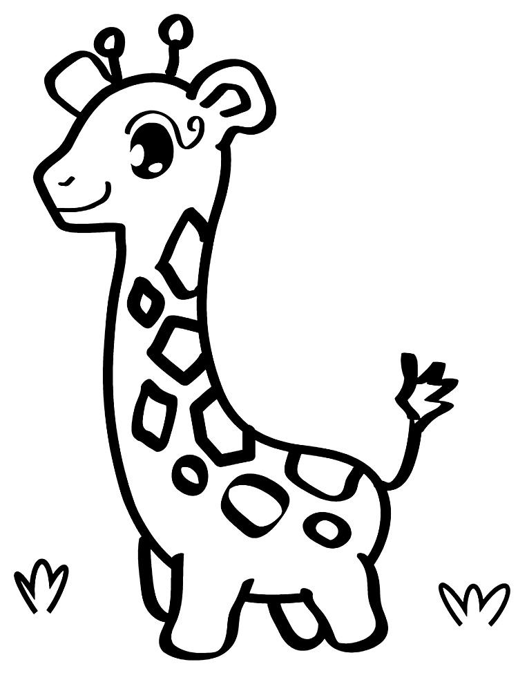 Gratuitos dibujos para colorear – animales, descargar e imprimir