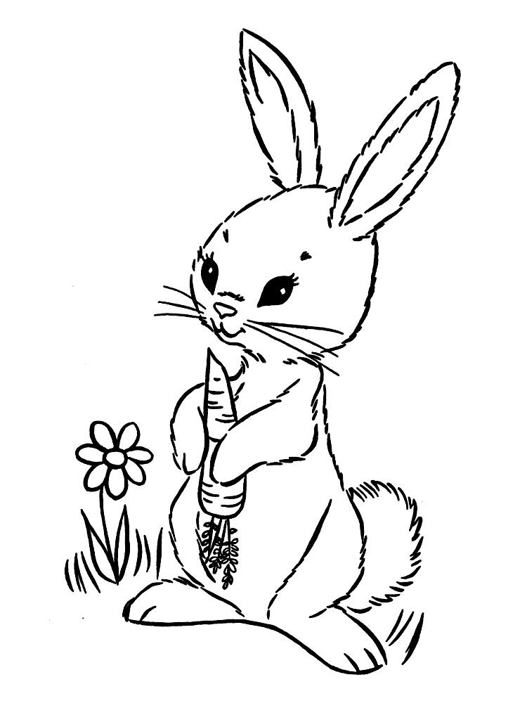dibujos para colorear  conejos imprimir gratis