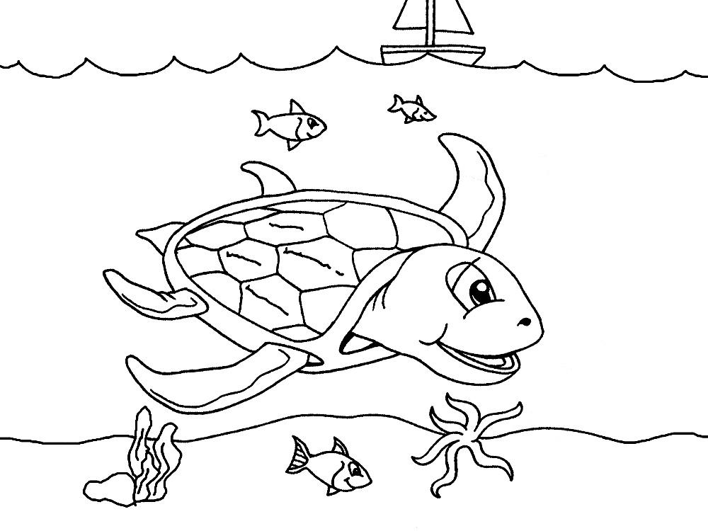 Dibujos para colorear – vida marina, para desarrollar la generación ...