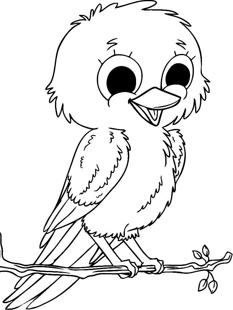 Dibujos para colorear – aves, para niñas y niños