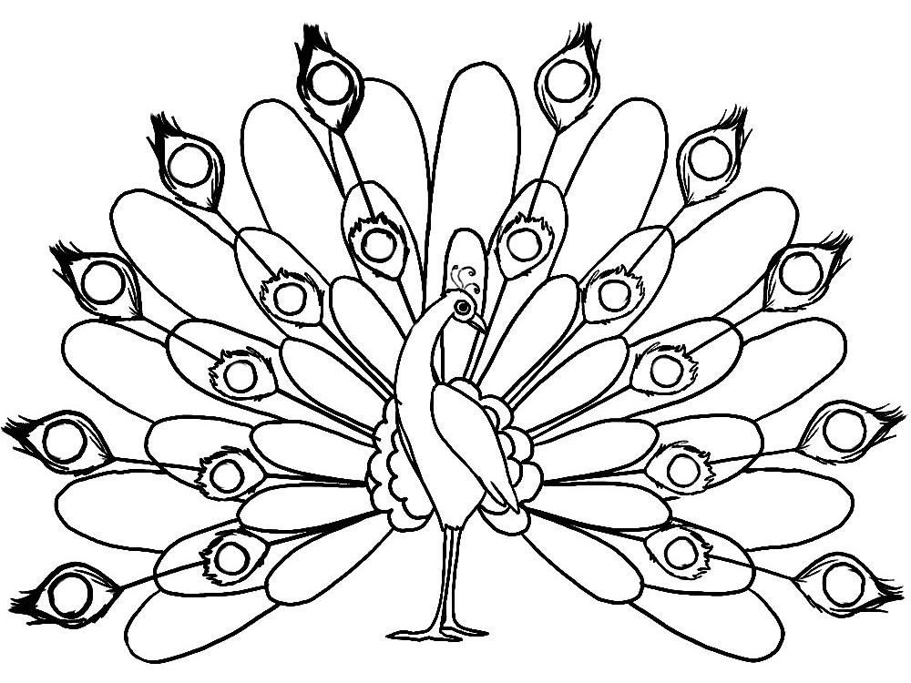 Dibujos para colorear - aves.