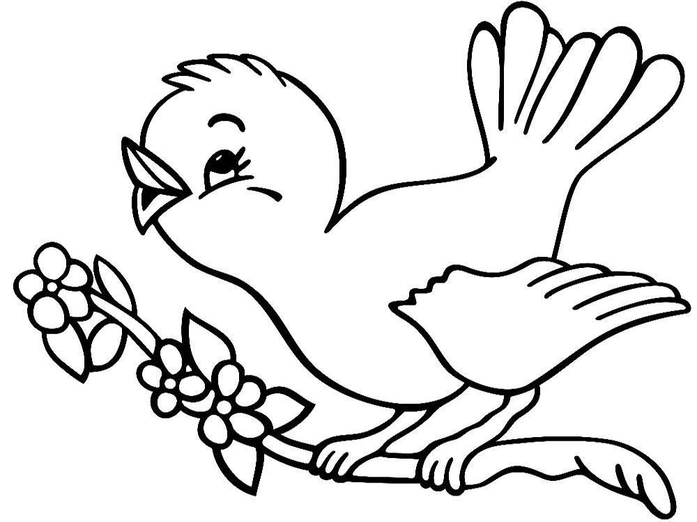 Descargar gratis dibujos para colorear – aves.