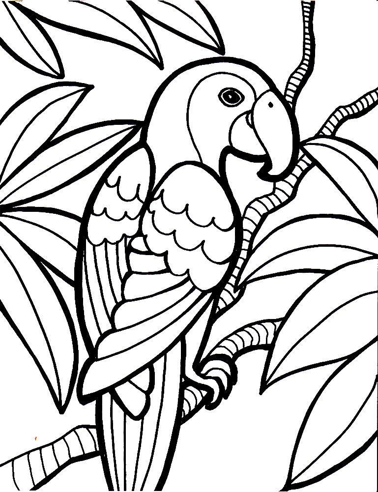 Asombroso Páginas Para Colorear De Pájaros Y Flores Adorno - Dibujos ...