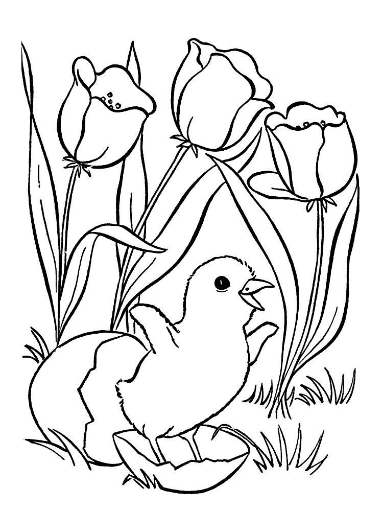 Famoso Páginas Para Colorear De Pájaros Y Flores Patrón - Dibujos ...