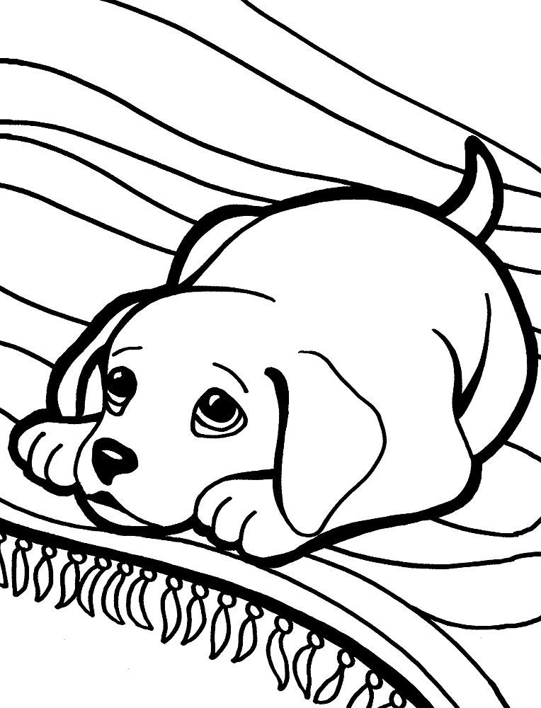 Perros Dibujos Infantiles Para Colorear