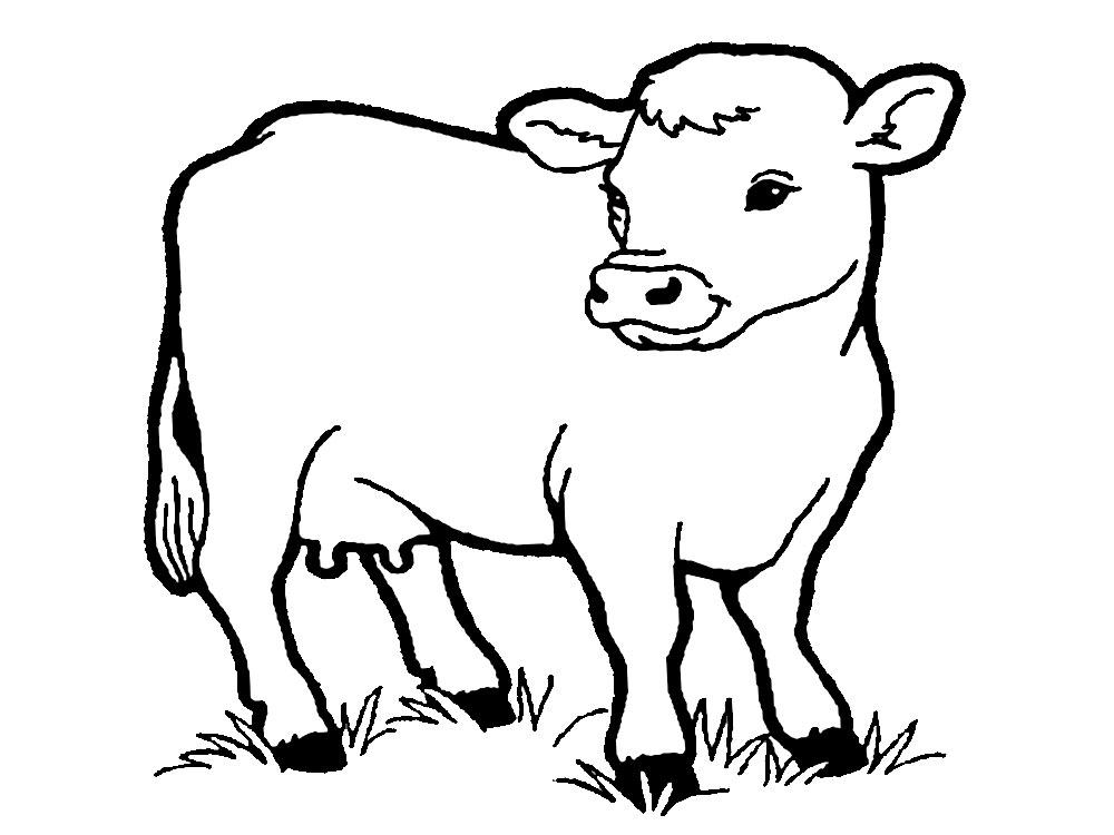 Útiles dibujos para colorear – granja, para chiquitines creativos