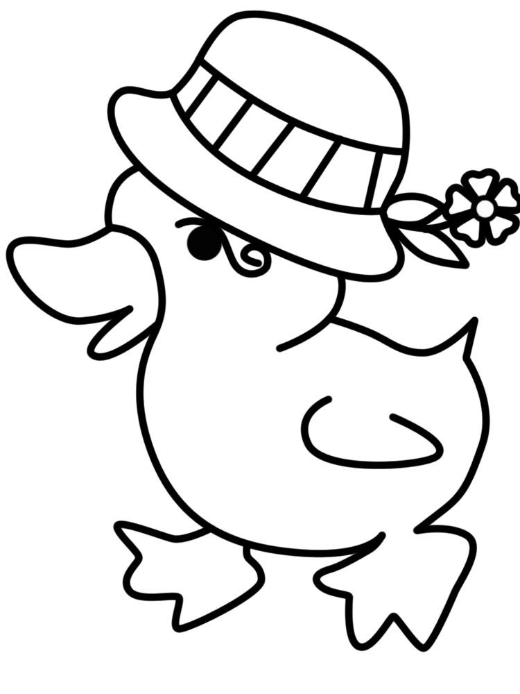 Descargue e imprima gratis dibujos para colorear – animales