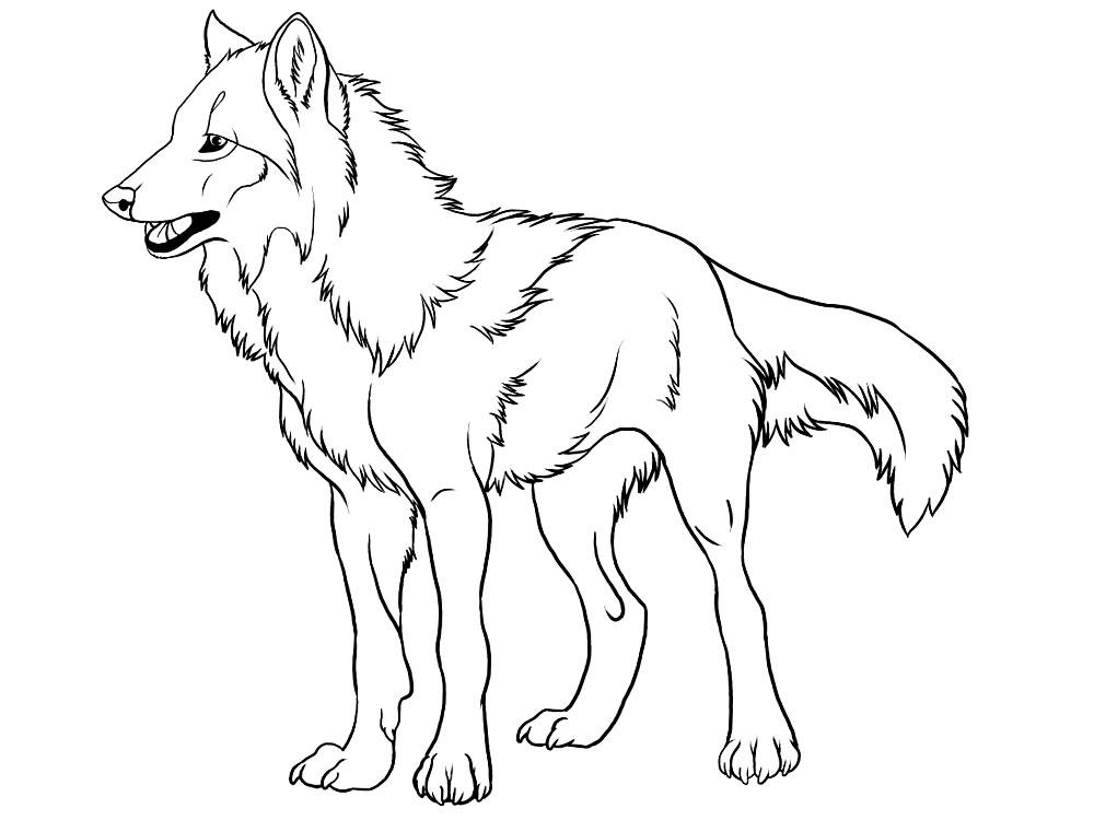 Algo útil para niñas y niños – dibujos para colorear – lobos