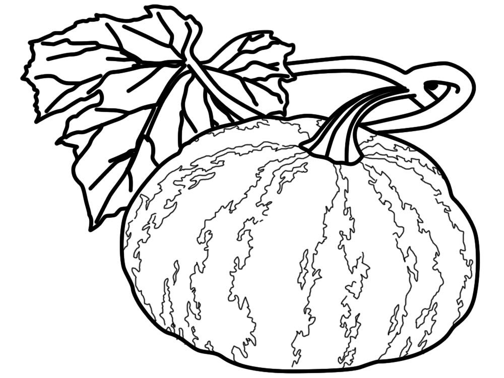 Algo Util Para Ninas Y Ninos Dibujos Para Colorear Verduras Y