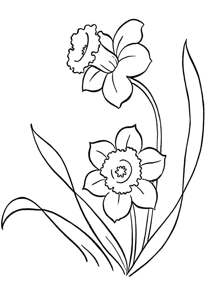 Flores Dibujos Infantiles Para Colorear Para Ninos Y Ninas