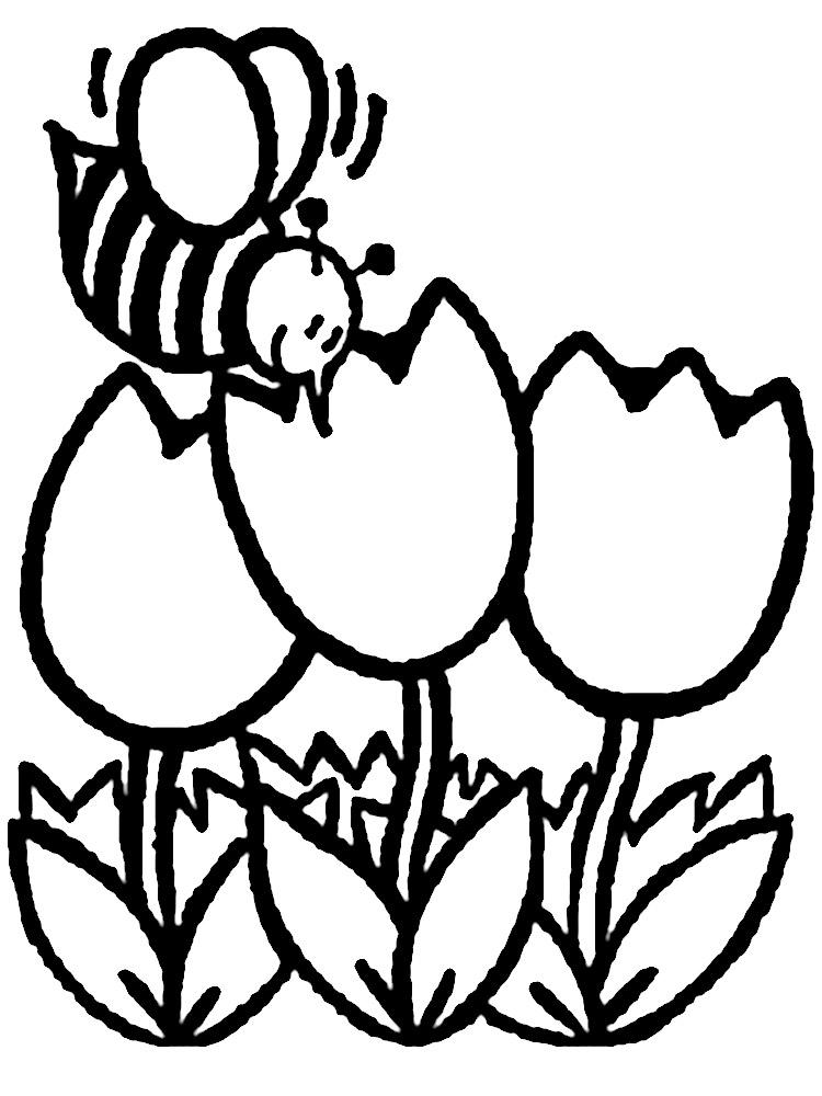 Dibujos animados para colorear – flores, para niños pequeños.