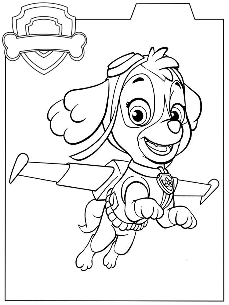 Paw Patrol Dibujos Animados Infantiles Para Colorear