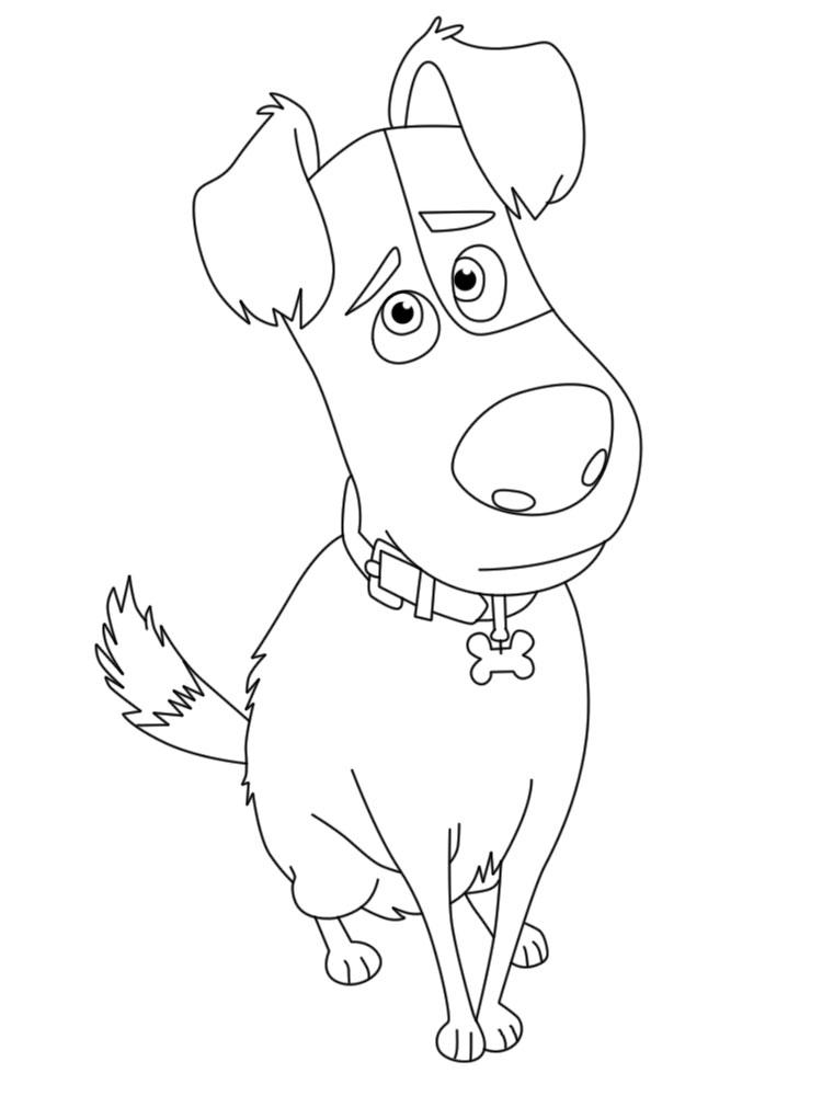 Dibujos Animados Para Colorear Mascotas Para Niños Pequeños