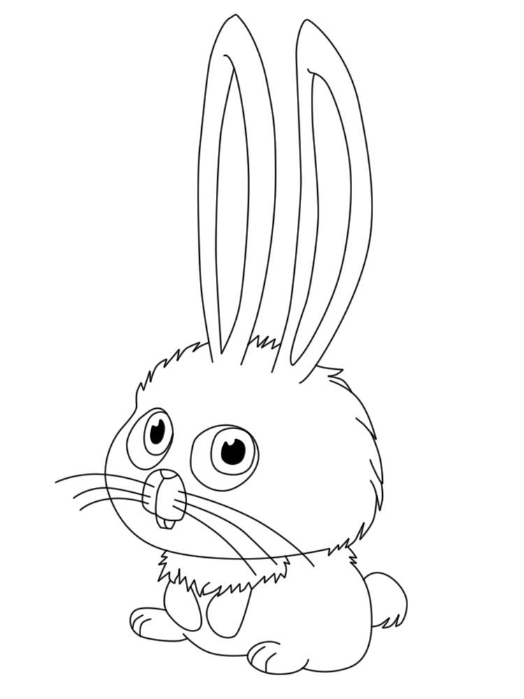 Dibujos Para Colorear Mascotas Para Niñas Y Niños