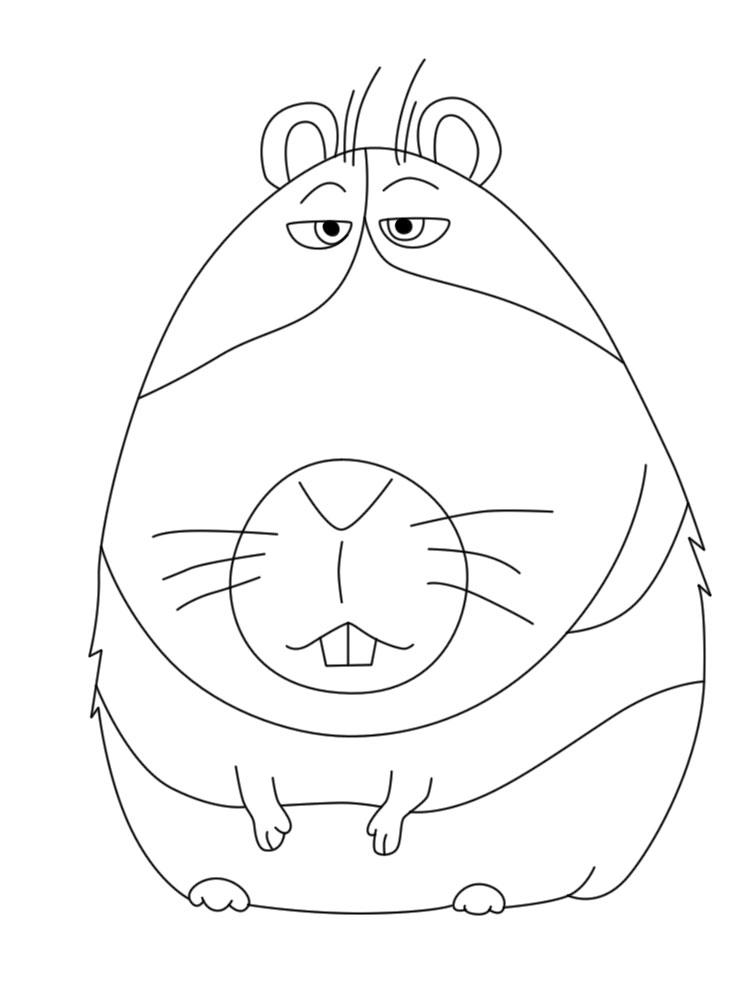 Imprimir imágenes dibujos para colorear – Mascotas, para niños y niñas